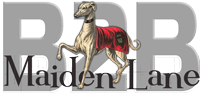 Maiden Lane B2B Logo